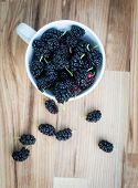 image of mulberry  - Ripe mulberries in white cup on wooden background selective focus - JPG