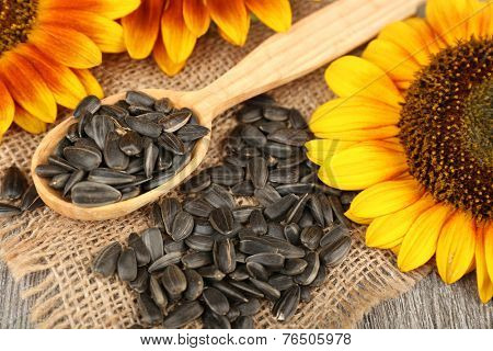 Sunflowers and seeds with spoon on table close up