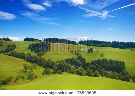 Rollling green hills of green pasture with blue sky