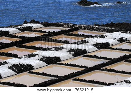 Sea salt production
