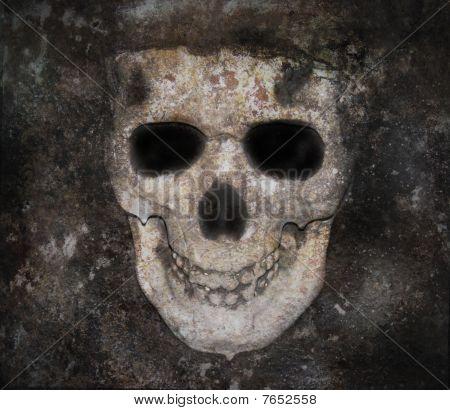 Scary Dark Skull Bones Face