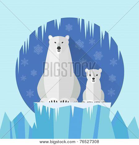 Polar Bear Flat Antarctica