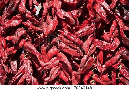 Red Hot Chilly Pepper 3