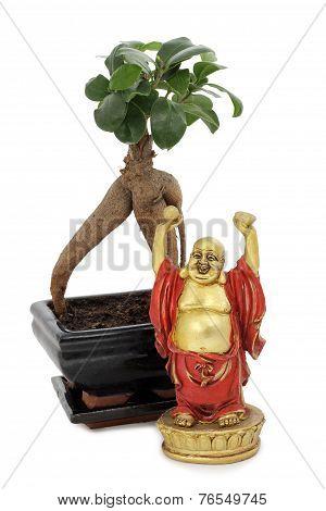 Buddha And Bonsai