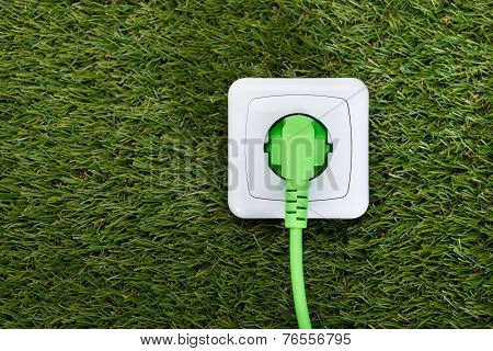 Green Plug In Outlet On Grass