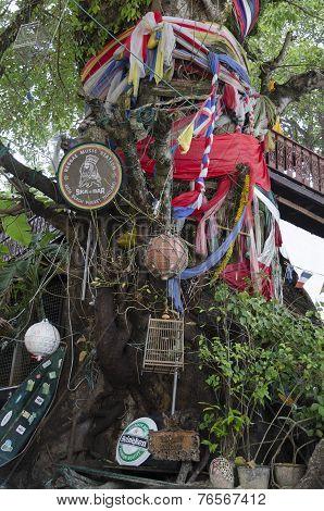 Phuket,TH-Sept,15 2014:Bedizened tree at the entrance to bar. Kata Bay in Sept,15 2014 in Phuket,TH