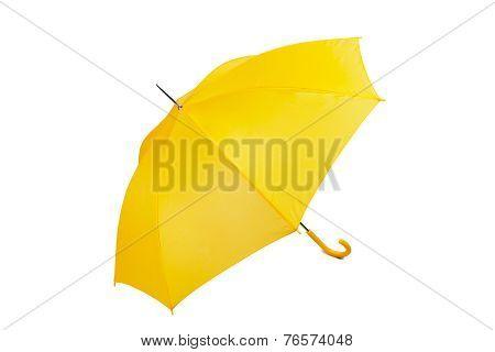 Big yellow umbrella