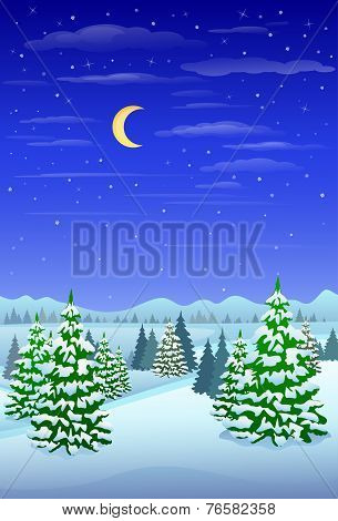 winter forest landscape christmas trees woods