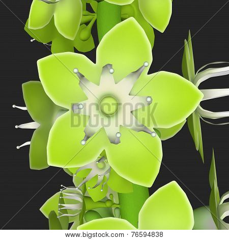 Coccoloba_Flower