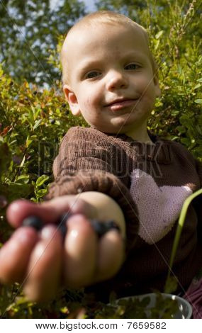 Child sharing berries