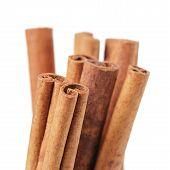 stock photo of cassia  - cinnamon cassia sticks isolated on white background - JPG