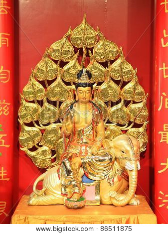 Golden Guan-yin On Elephant Statue