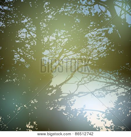 summer design, forest, nature green wood sunlight natural green background. Vector