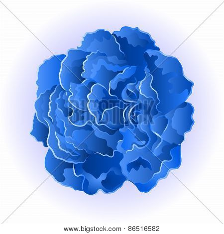 Blue rose simple vector