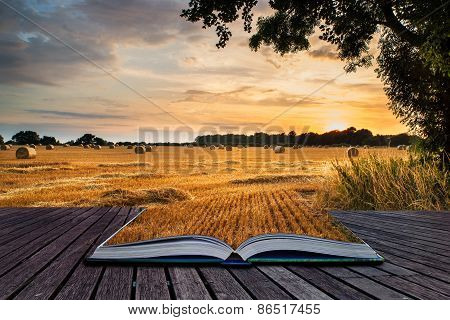 Rural Landscape Image Of Summer Sunset Over Field Of Hay Bales Conceptual Book Image