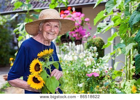 Smiling Old Woman Holding Sunflowers At The Garden