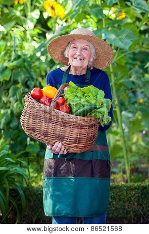 Old Woman With Basket Of Vegetables At The Garden