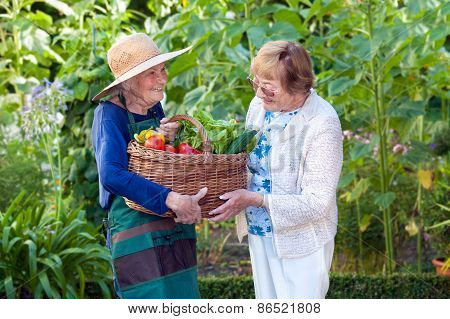 Mature Woman Helping A Senior Gardener With Basket