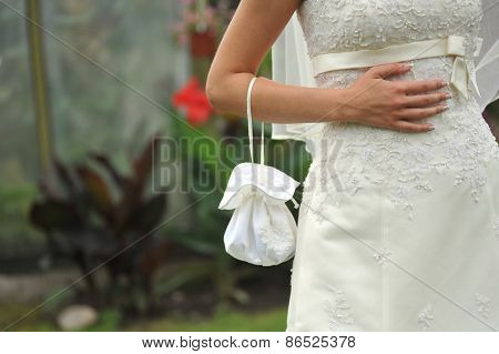 Bride With Handbag