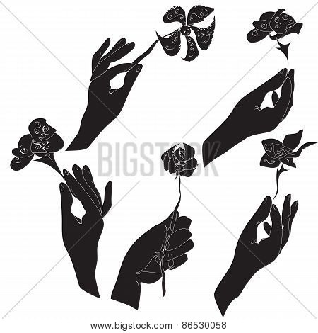 Hands with flowers set
