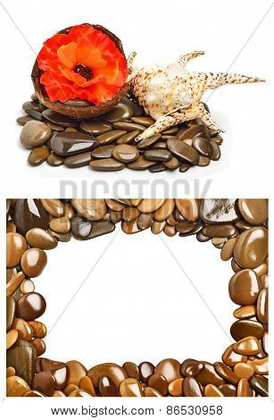 Seashell, Flower In Coconut Shell On Pebbles For Spa