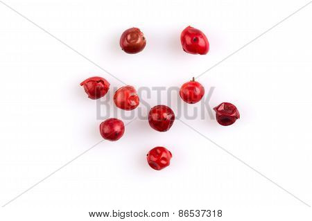 Red Peppercorns