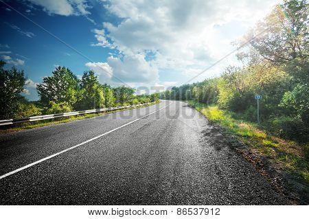 Summer Landscape With An Asphalt Road Between Green Trees