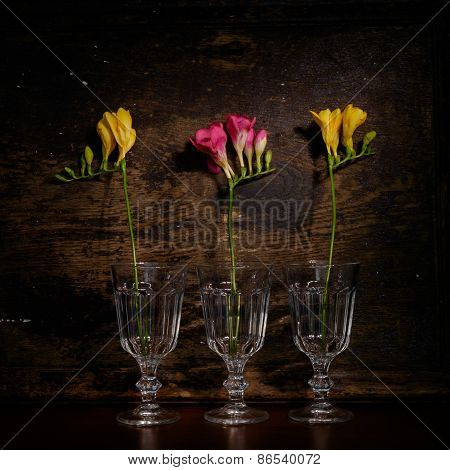 Yellow Freesia Flower On Wooden Background