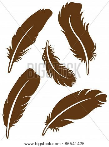 Symbol feathers