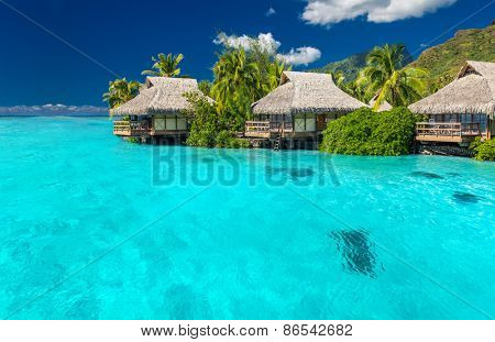 Overwater villas in tropical lagoon of Moorea Island with coral reef