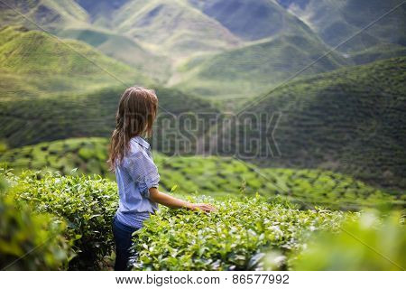 Young Woman On Tea Plantation