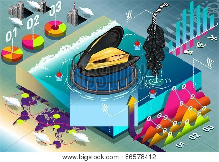 Isometric Infographic Of Mussels Breeding