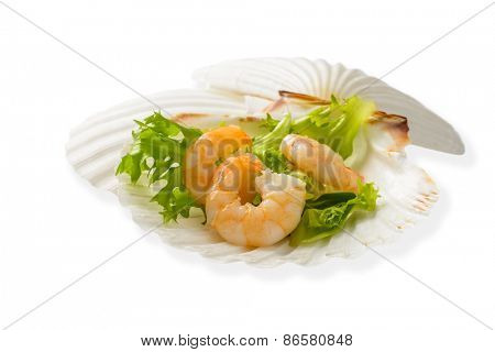 Prawn seafood appetizer served in scallop shell on a white background