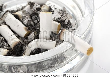 Cigarete Butt