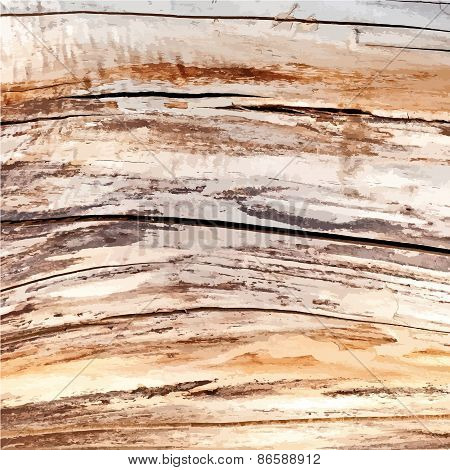 Dry Wood Color