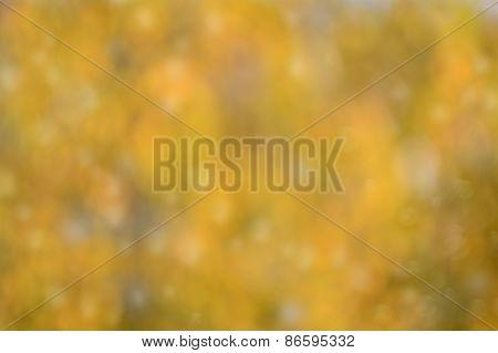 Brown Yellow Bokeh Background