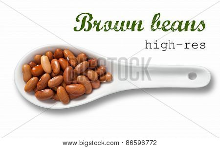 Brown Beans In White Porcelain Spoon / High Resolution Product Photography Of Seed In White Porcelai