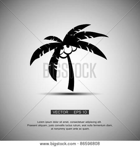 Coconut palm tree black silhouette isolated on light background. Abstract design logo. Logotype art