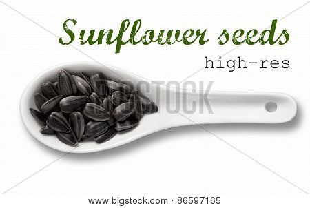 Black Sunflower Seeds In White Porcelain Spoon / High Resolution Product Photography Of Seed