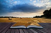 foto of hay bale  - Beautiful Summer sunset over field of hay bales in countryside landscape conceptual book image - JPG