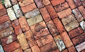 picture of garden eden  - Vintage Brick Walkway at Eden Gardens State Park - JPG