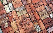 picture of garden eden  - Vintage Brick Walkway at Eden Gardens State Park - JPG