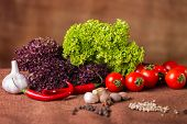 stock photo of vegetables  - Fresh vegetables - JPG