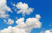 picture of cumulus-clouds  - Blue sky background with white cumulus clouds on a sunny day - JPG