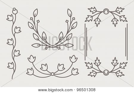 Set Of Mono Line Calligraphic Floral Decorative Elements