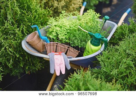 Various tools and objects for gardening in wheelbarrow