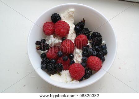 dessert with fresh cheese and berries: raspberries blackberries mulberries
