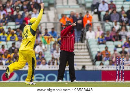 LONDON, ENGLAND - June 17 2013: Umpire  Tony Hill  signals out for Sri Lanka's Kusal Perera of the bowling of Mitchell Johnson during the ICC Champions Trophy match between Sri Lanka and Australia.