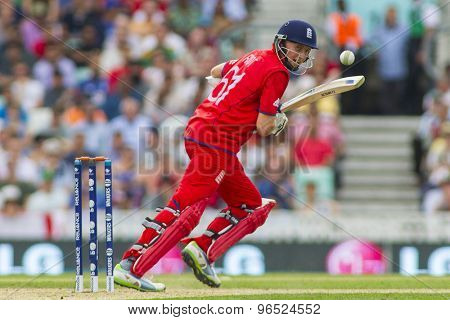 LONDON, ENGLAND - June 19 2013: Joe Root batting during the ICC Champions Trophy semi final match between England and South Africa at The Oval Cricket Ground