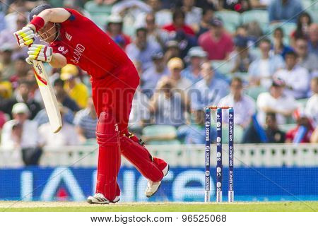 LONDON, ENGLAND - June 19 2013: England's Ian Bell hits the ball and is caught out by AB de Villiers during the ICC Champions Trophy semi final match between England and South Africa